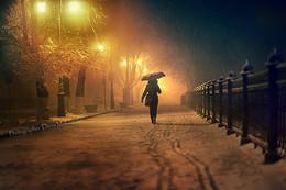Мокрая пятница / Одинокий путник волшебной ночью.