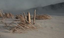 Прогулка по морозному берегу. / Солнце, мороз и метель.