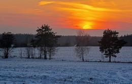 Краски зимнего заката / ***