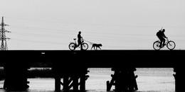 Электрические игрушки / мой любимый мост