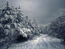 / Зима