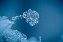 Ледяная вертушка... / ***