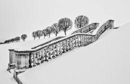Земляной вал / Фото из архива. Деревьев больше нет. Посадили молодняк. И что с лестницей теперь будет, неизвестно....Реставрация((((