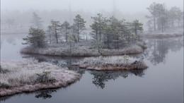 Песня болот / Балтика