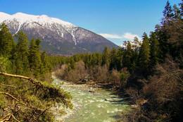 / река Зеленчук Карачаево-Черкесия окрестности поселка Архыз