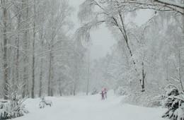 В метель-на лыжню! / В парке