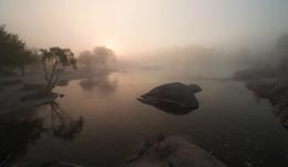 Черепаха Бугского Гарда. / Река Южный Буг. Село Мигея. Украина.