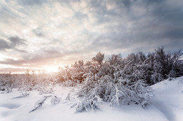 Февральский закат / Крайний Север