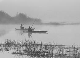 """Синхронный заброс. / Из серии """" Мигеевские рыбаки."""" Река Южный Буг. ( репост)"""