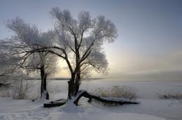 Утро на Святом озере.. / Московская область, Шатура