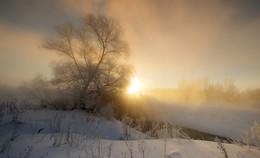 Начало нового дня / Зимние туманы.
