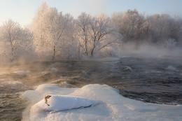 Зимний Gipanis. / Река Южный Буг. Украина.