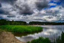 Без названия / лесное озеро