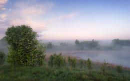 Туманная дымка рассвета / Весенние туманы.
