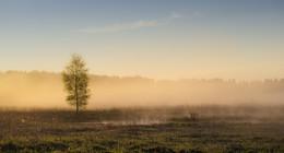 Во поле туманном берёза стояла / Солнечные рассветы мая.