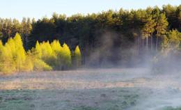 Под утренним солнцем / Рассветные туманы.