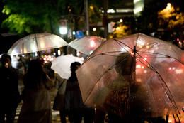 / В Киото дождь..