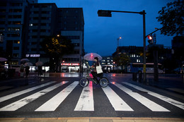 / Kyoto
