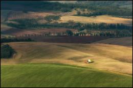Урожай не ждёт / Уборочная страда в Тоскане.