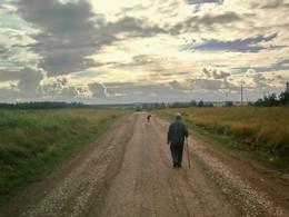 Старик и собака. / Дорога и путник, и собака..