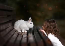 Следуй за белым кроликом... / Кролик и девочка в лесу