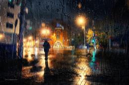 """Слезы дождя / Из серии """"Десять мгновений осени"""""""
