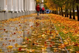 Запах осени / Дождь. Осень. Петергоф