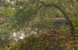 Запах осени / Осень в Харитоновском парке