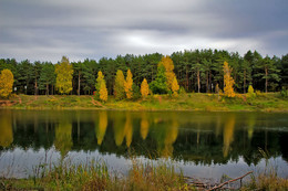 Осенние краски природы. / Бабье лето.