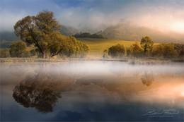 Без названия / Morgens am Rattenberger Teich in der Steiermark.