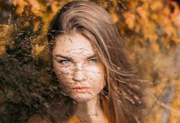 золотая осень /