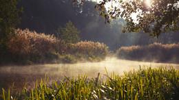 «Посорь на рассвете» / Маленькая речушка Посорь, одно из моих любимых мест для съёмок.