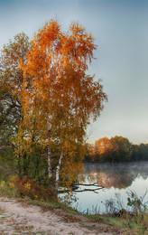 «Осень» / Осеннее утро, озеро у деревни Радчино