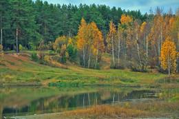 Осенние краски природы. / Осень.2018.г. Золотая осень!