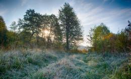 «Первый заморозок» / Свежесть осеннего утра