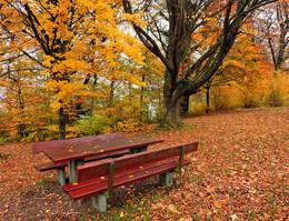 / ...осень...