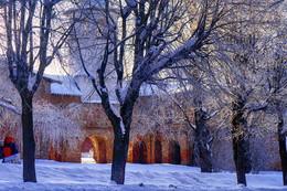 Морозное утро / Новгород