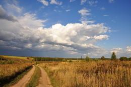 Дороги осени. / Осенняя дорога в полях.