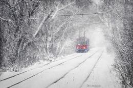 """Туннель в зиму / Из серии """"Семнадцать мгновений зимы""""."""