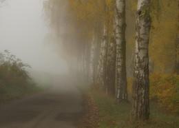 Туманная перспектива / Утром туманным . Этюдный вариант .