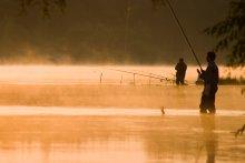 Утро туманное / рассвет на реке
