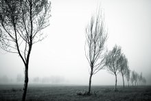 Время, когда всегда туманы / Утро, туман.
