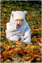 "Вкус осени 2 / еще один голодный ""медвеженок""  еще листоеды тут: http://photoclub.by/work.php?id_photo=87929&id_auth_photo=30#t http://photoclub.by/work.php?id_photo=87913&id_auth_photo=30#t"