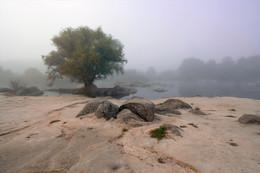 / Уголок природы в бассейне реки Южный Буг. с. Мигея. Украина.