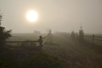 Из прогулок по Закарпатью. Солнце в тумане / ***