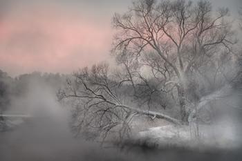 Тепло и холод / Теплая подмосковная Пехорка густо парит на утреннем морозе.