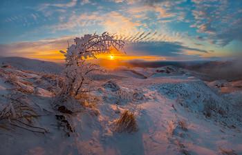 Зима на Ставрополье / Зимняя степь на юго-западном склоне горы Стрижамент. Был туманный вечер, с очень сильным ветром. К закату солнце наконец-то пробилось, озаряя пейзаж картинным светом.  Фотопроект «Открывая Ставрополье». 18 декабря, 2018 г.