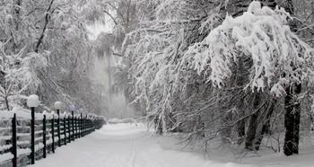 Красавица зима! / Снегопад -парк-Строгино