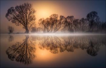 Без названия / Morgens an einen kleinen Teich in der Steiermark.