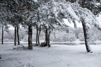 Вот такой он январь / Зимний пейзаж на Оке.